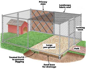 Chicken House Safety