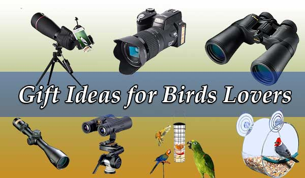 Gift Ideas for Bird Lovers